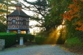 autumn, castle, forest, morning, outdoor, photo architecture, sun, sunrise